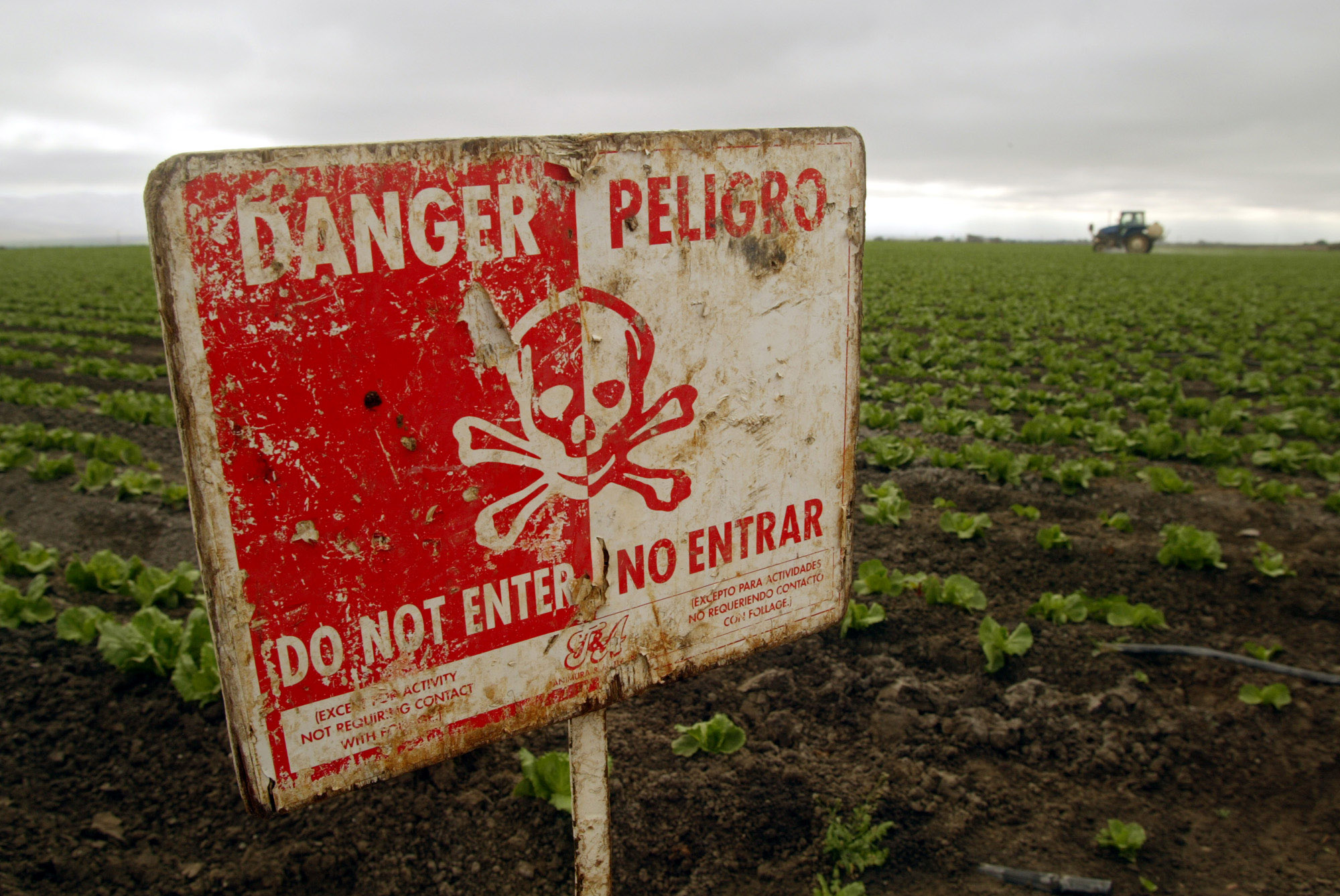 Will Trump Block Ban of Pesticide Linked to Autism?